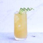 Alles wat je moet weten over de kunst van cocktails maken